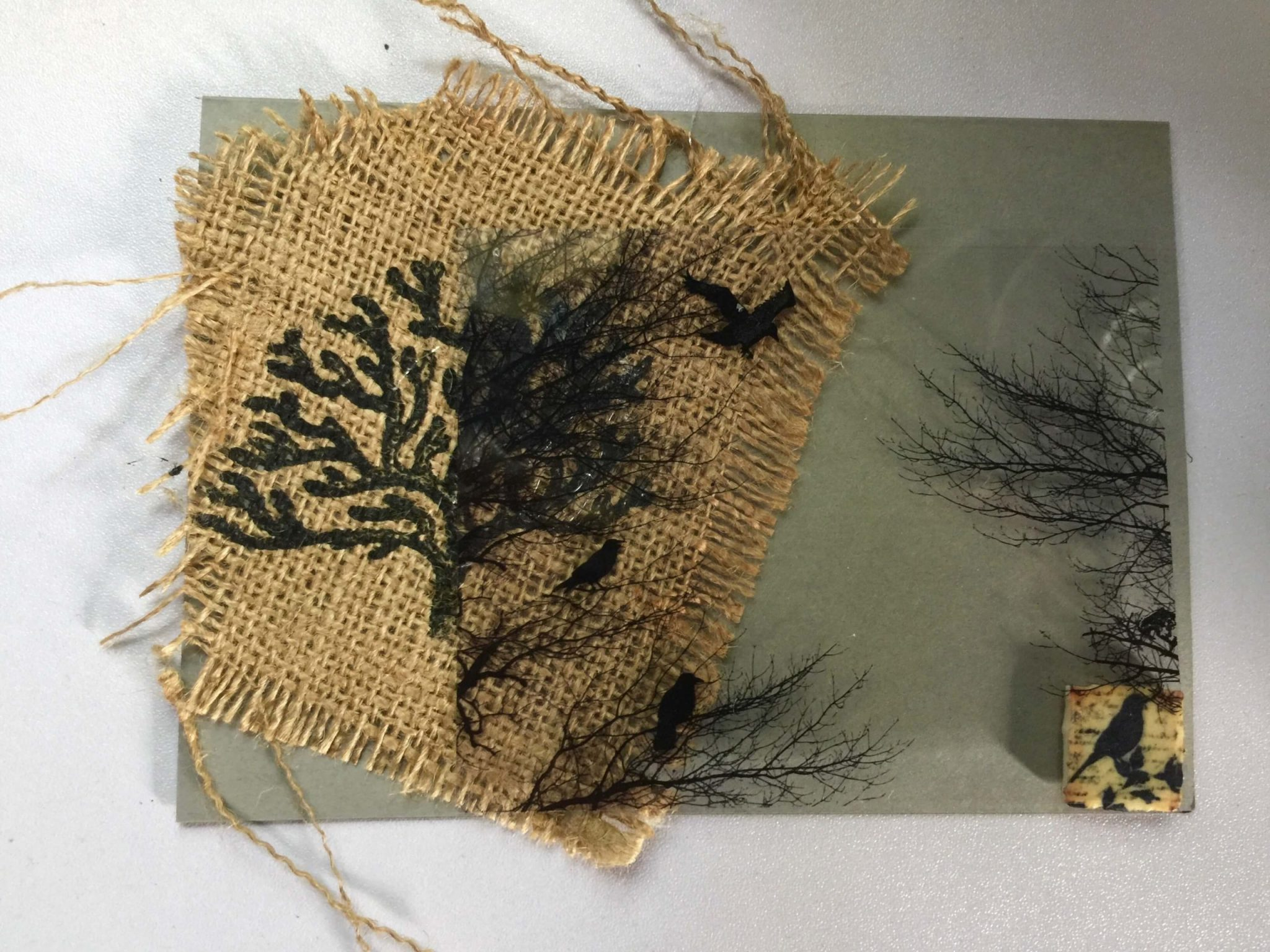 original 1 of one greeting card untitled birds and trees by ste7en foster